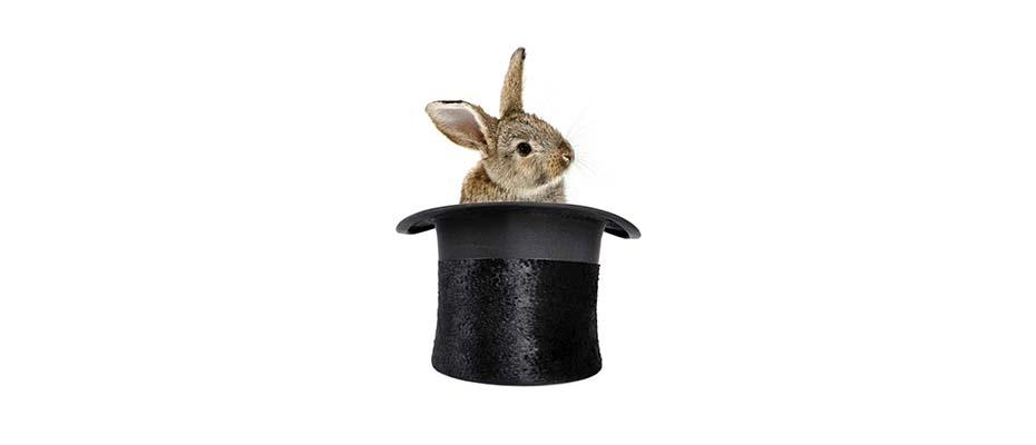 Mandate werden aus dem Hut gezaubert wie Kaninchen.|© Uros Petrovic - Fotolia